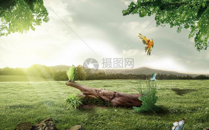湖南省资源环境承载能力和国土空间开发适宜性评价技术